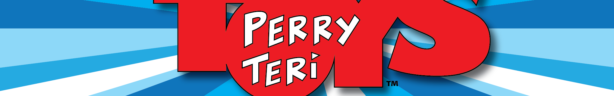 Perry Teri Toys llc